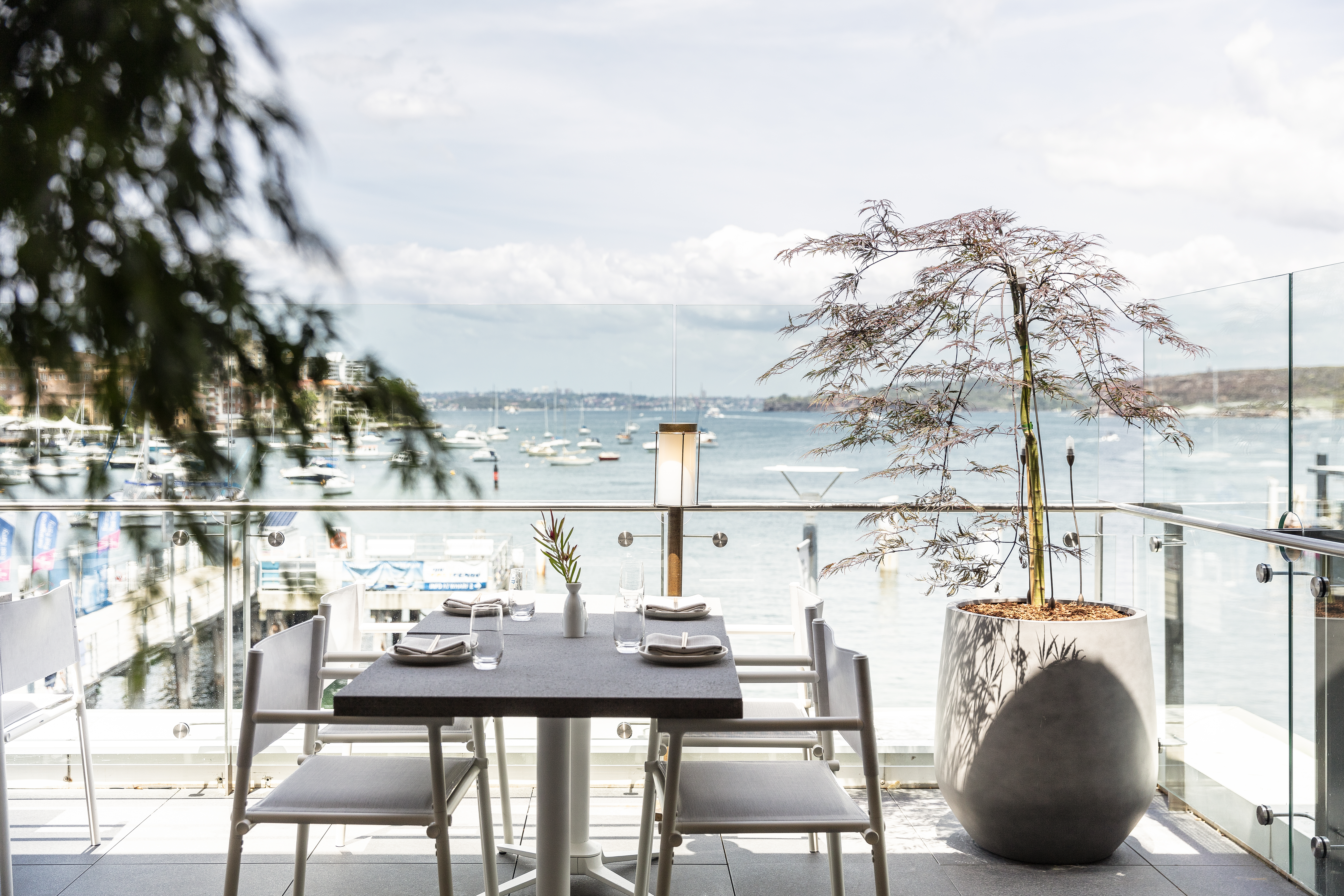Rockpool Dining Group prepares to re-open restaurants